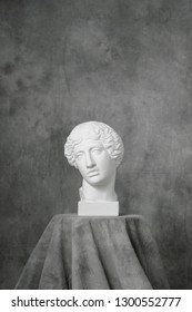 The plaster white head of an antique Amazon woman, on a gray fabric artistic background. Drapery and folds.