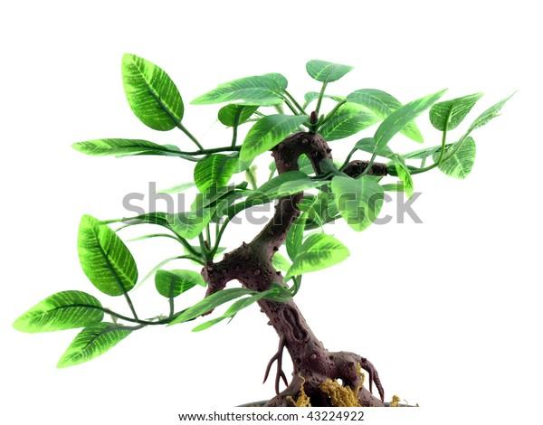 plastic-artificial-tree-over-white-600w-