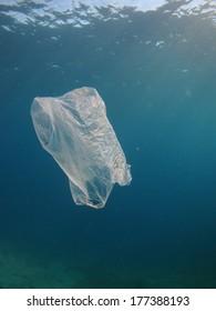 Plastic Bag floating underwater in the Red Sea