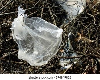 Plastic bag on the branch tree