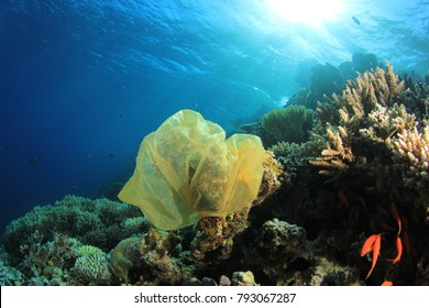 Plastic bag pollution on coral reef