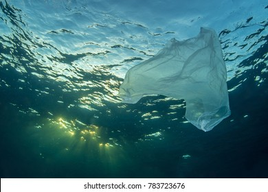Plastic Bag underwater ocean pollution