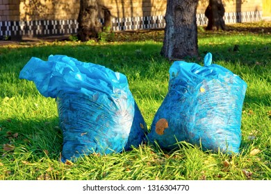 Plastic bags with fallen leaves on the lawn.