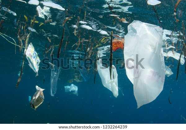 Plastic bags and other trash littered into the ocean from people float near the surface of the sea.