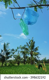 Plastic bags are recycled to scare away birds over a ripening rice field in Ubud, Bali, Indonesia.