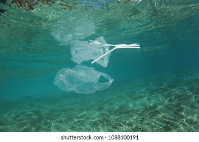 Plastic bags and straws pollute the sea