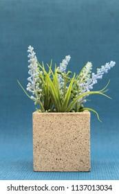 A plastic blue heather flower plant in a square concrete planter.