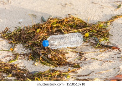 plastic bottle with cap washed up on beach mixed with seaweed