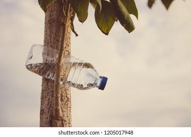 Plastic bottle in nature contaminates