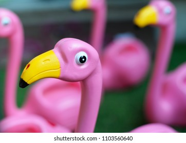 plastic bright pink flamingo's with yellow beak, selective focus