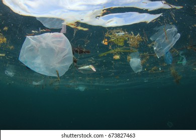 Plastic carrier bags pollution in ocean