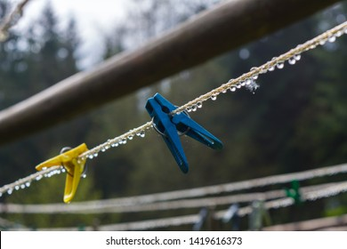 plastic clothesline with clothespin and  dew droplets. Blue and yellow Clothes pegs hanging on clotheslines with dew  drops. Reflection of trees in water droplets. blurred green trees on background.