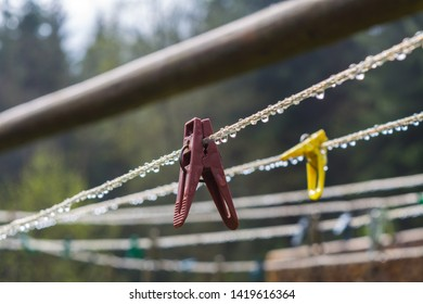 plastic clothesline with clothespin and  dew drops. Red and yellow Clothes pegs hanging on clotheslines with dew  drops. Reflection of trees in water droplets. blurred trees on green background