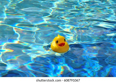 Plastic ducky swimming