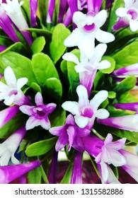 Plastic flower dandellion