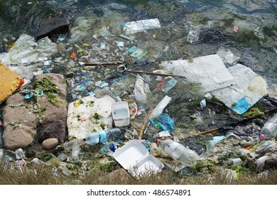 Plastic garbage has washed up on a remote beach in the Sea. Toxins from plastic can enter the food chain and threaten marine life and human health.