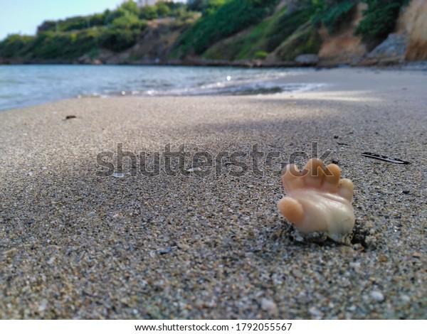 Una mano de plástico emerge de la arena de una playa desolada, la naturaleza está ahora en peligro debido a la contaminación