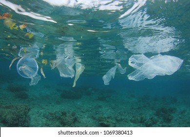 Plastic ocean pollution. Plastic bags, straws, cups and bottles discarded in sea instead of recycling. Environmental problem