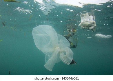 Plastic ocean. Pollution crisis as plastic bags, cups, straws and bottles end up in sea