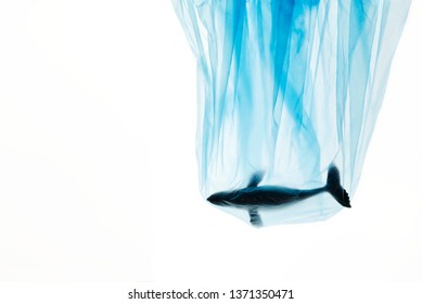 Plastic pollution creative concept advertise for campaign save oceans by photo of humpback whale model struck in blue plastic bag with copy space. Plastic bag looks transparent by studio flash light.