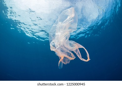 Plastic pollution:- A discarded plastic bag floats in a clear, blue water, tropical ocean
