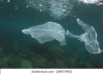 Plastic pollution of ocean
