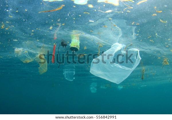 Pollution des plastiques dans l'océan