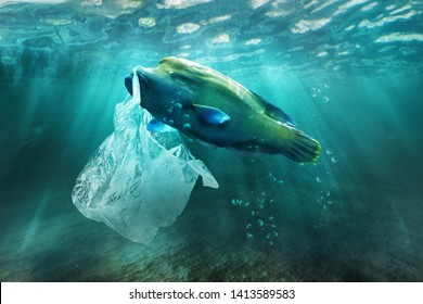 Plastic pollution in ocean environmental problem. Fish can eat plastic bags.