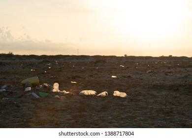 Plastic pollution on beach, Mannar island, Talaimannar, Sri Lanka