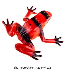 a plastic red frog toy isolated over a pure white background