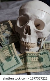 A plastic replica of a human skull surrounded by $20 US dollar bills