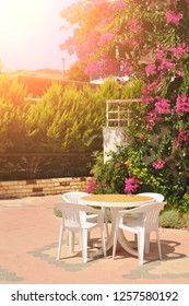 Plastic table with chairs in the garden with green bushes and white flowers against sky with sunlight