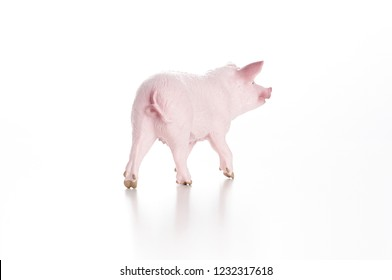 Pig Back Images, Stock Photos & Vectors | Shutterstock