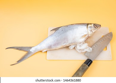 Plastic waste come out of fish body after cut opened by knife. Close up shot on  light orange background. Plastic pollution concept.