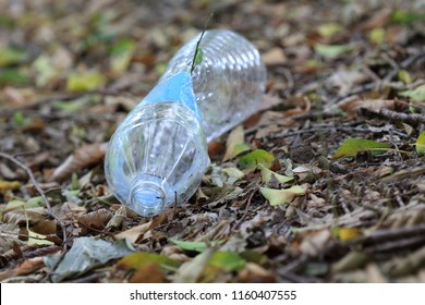 A Plastic waste in a forest