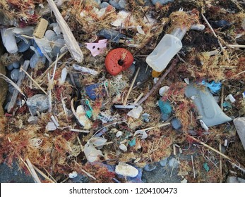 Plastic waste washed on the shore of the atlantic ocean mixed together with organic beach goods