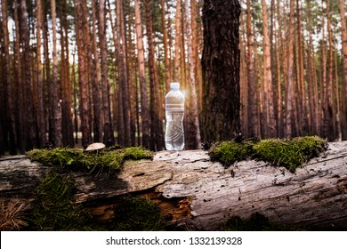 Plastic water bottle stands on a felled log with moss and mushrooms on Forest. Concept of natural clean water. Added highlight effect