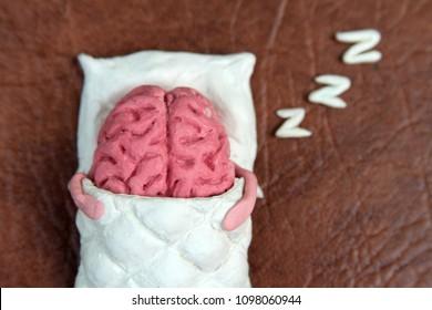 Plasticine human brain sleeps on the pillow