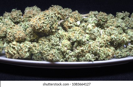 Plate of cheese strain of cannabis with black background