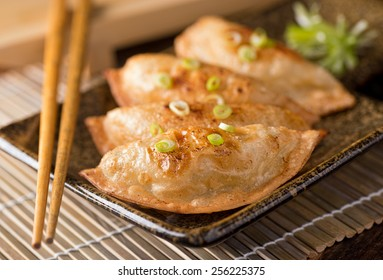 A plate of delicious asian pot stickers with scallions.