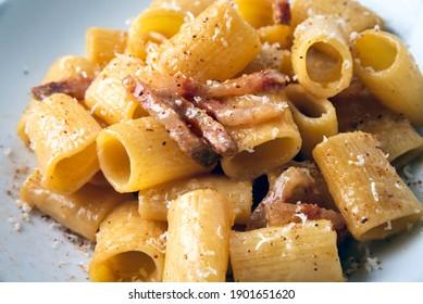 Plate of delicious pasta alla gricia, a typical recipe of roman cuisine, Italian food