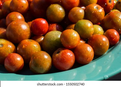 plate of freshly washed cherry tomatoes ready to eat