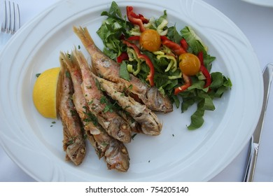 Plate of grilled red snapper with salad
