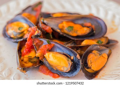 A plate with mussels in tomato sauce.