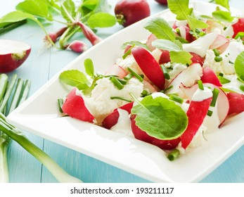 Plate with radish-cottage cheese salad. Shallow dof.