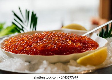 Plate with a red caviar on ice