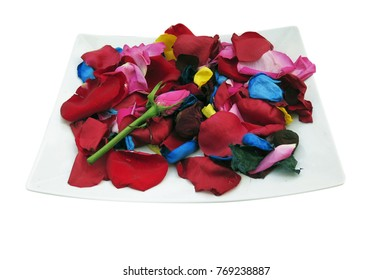 Plate with rose petals, isolated