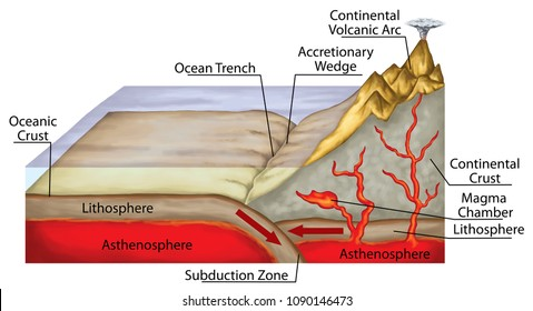 Plate tectonics, tectonic processes, interactions of the tectonic plates, types of plate boundaries, convergent boundary, destructive plate boundary, oceanic trenches, geography, geophysics, geology