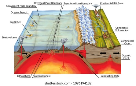 Plate tectonics, tectonic processes, interactions of the tectonic plates, types of plate boundaries, transform boundary, convergent boundary, divergent boundary, mountain formation, geology, geography
