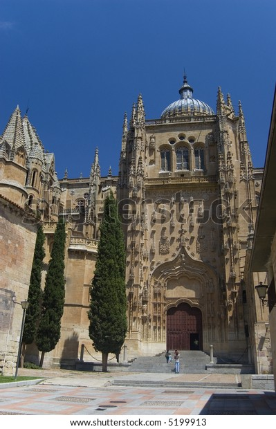 Plateresque facade of the rear of the New Cathedral of Salamanca. Spain